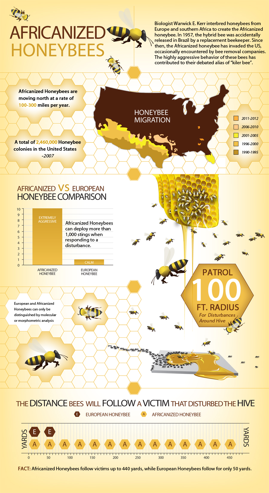 Pro Pacific Bee Removal San Diego