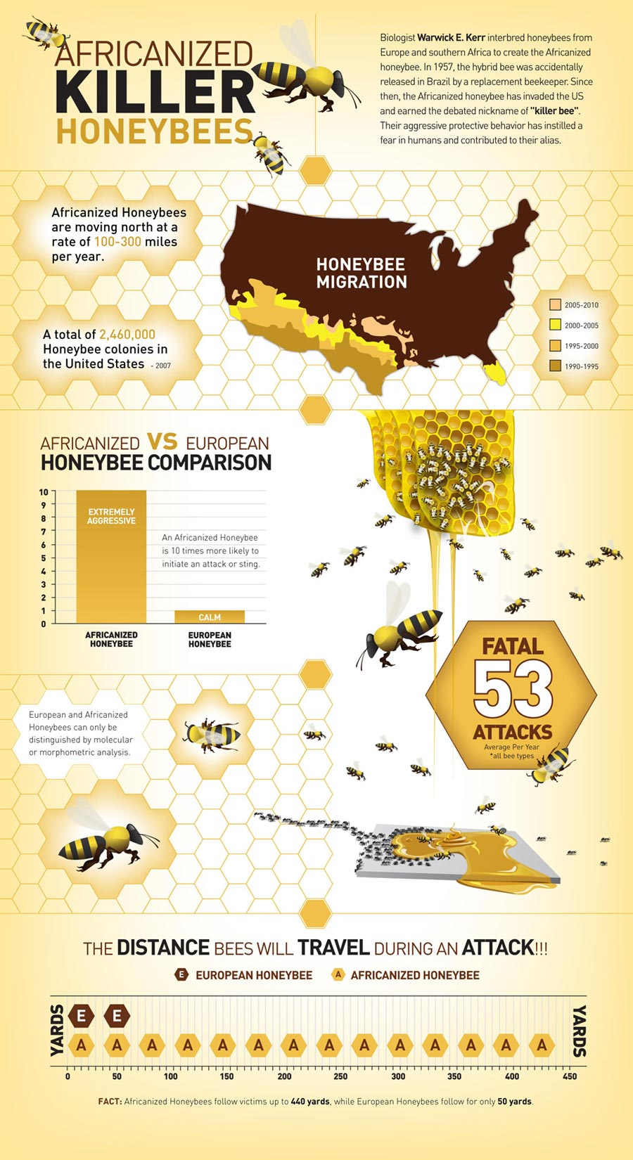 Pro Pacific Bee Removal - Africanized Honeybee Facts