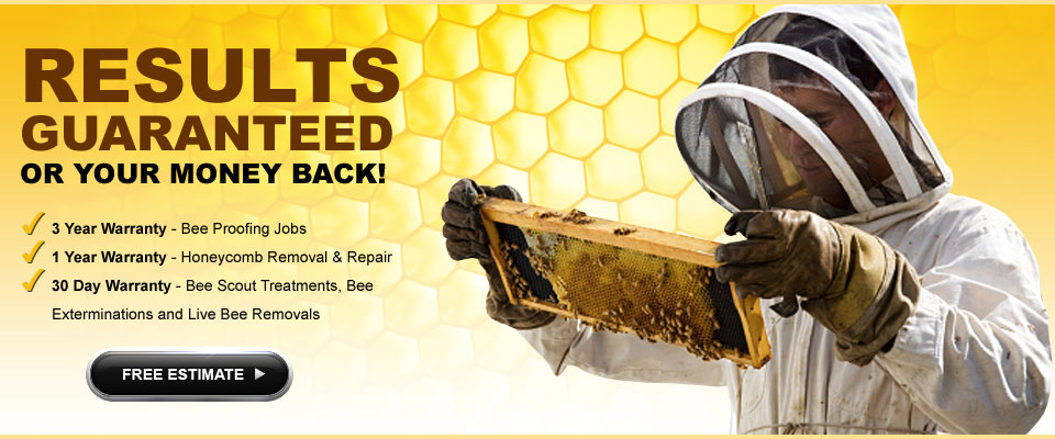 Effective bee control & bee removal techniques that come with a guarantee. All San Diego, Orange County, Riverside, & SB residents receive money-back guarantees on work.