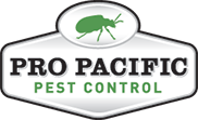 Pro Pacific Bee Removal